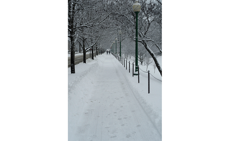 The sidewalk on East 7th Street along Dunn Meadow looked longer and narrower than usual, and there was a picturesque balance of trees and light posts.  Photo by Ann Georgescu