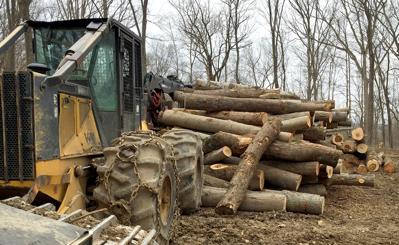 A bill passed by the Indiana House in February aimed to limit a local government's authority, but not the state's, over the right to harvest resources, such as timber, on personal property. The bill died in a Senate committee, but balancing personal property rights with the rights of others who might be affected is an ongoing battle. | Limestone Post
