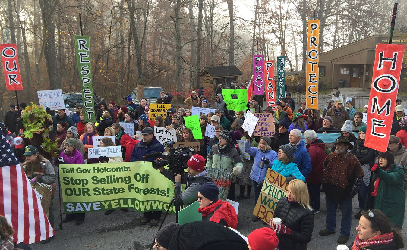 Protesters affiliated with the Indiana Forest Alliance work to protect 300 acres of the Yellowwood State Forest Back Country Areain Brown County in 2017. Since 2012, the Indiana Division of Forestry has increased logging of state forests by 400 percent, says IFA's Anne Laker. | Photo courtesy of the Indiana Forest Alliance