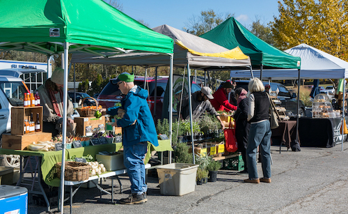 Ellen Wu wrote an article for LP this year about the People's Market — a new farmers market in Bloomington that focuses on food justice and mutual aid — and how it was adjusting to the coronavirus pandemic. | Photo by Andrew Grodner