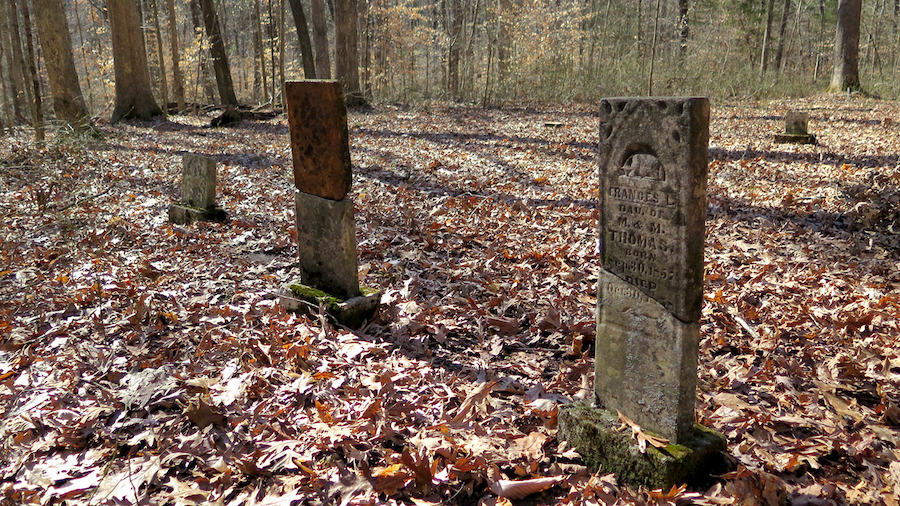 A cemetery is the only visible remnant of the Lick Creek settlement in Orange County, which during the 1800s was one of the largest settlements in Indiana for free people of color. | Limestone Post