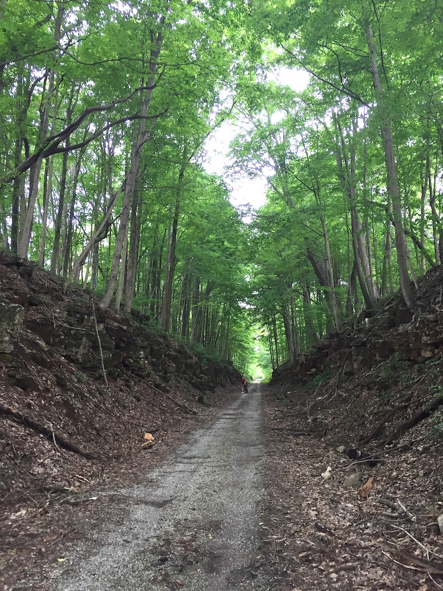 Hitting the trail — as in the Milwaukee Trail in Bedford — will soon have you surrounded by forest and limestone. | Limestone Post