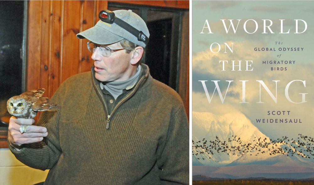 An avid birder since he was 12 years old, Scott Weidensaul is a citizen researcher, bird bander, and founder of the Project Owlnet. He also wrote the New York Times best-selling book 'A World on the Wing: The Global Odyssey of Migratory Birds.'   Courtesy photo and image