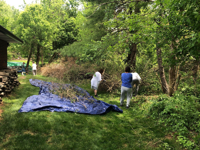 Volunteers in the Blue Ridge neighborhood work together to remove Asian bush honeysuckle from their properties. | Photo by Sean Chung